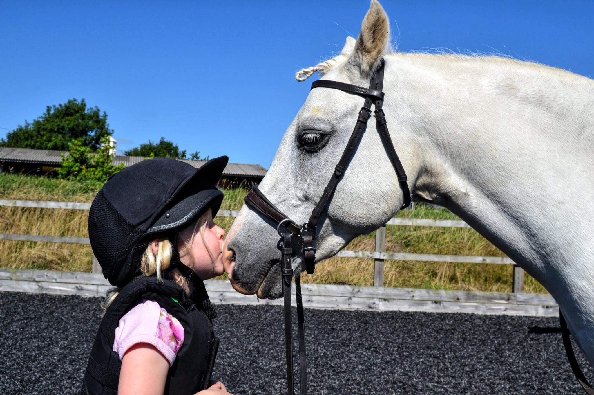 Children love ponies. Mutual happiness.
