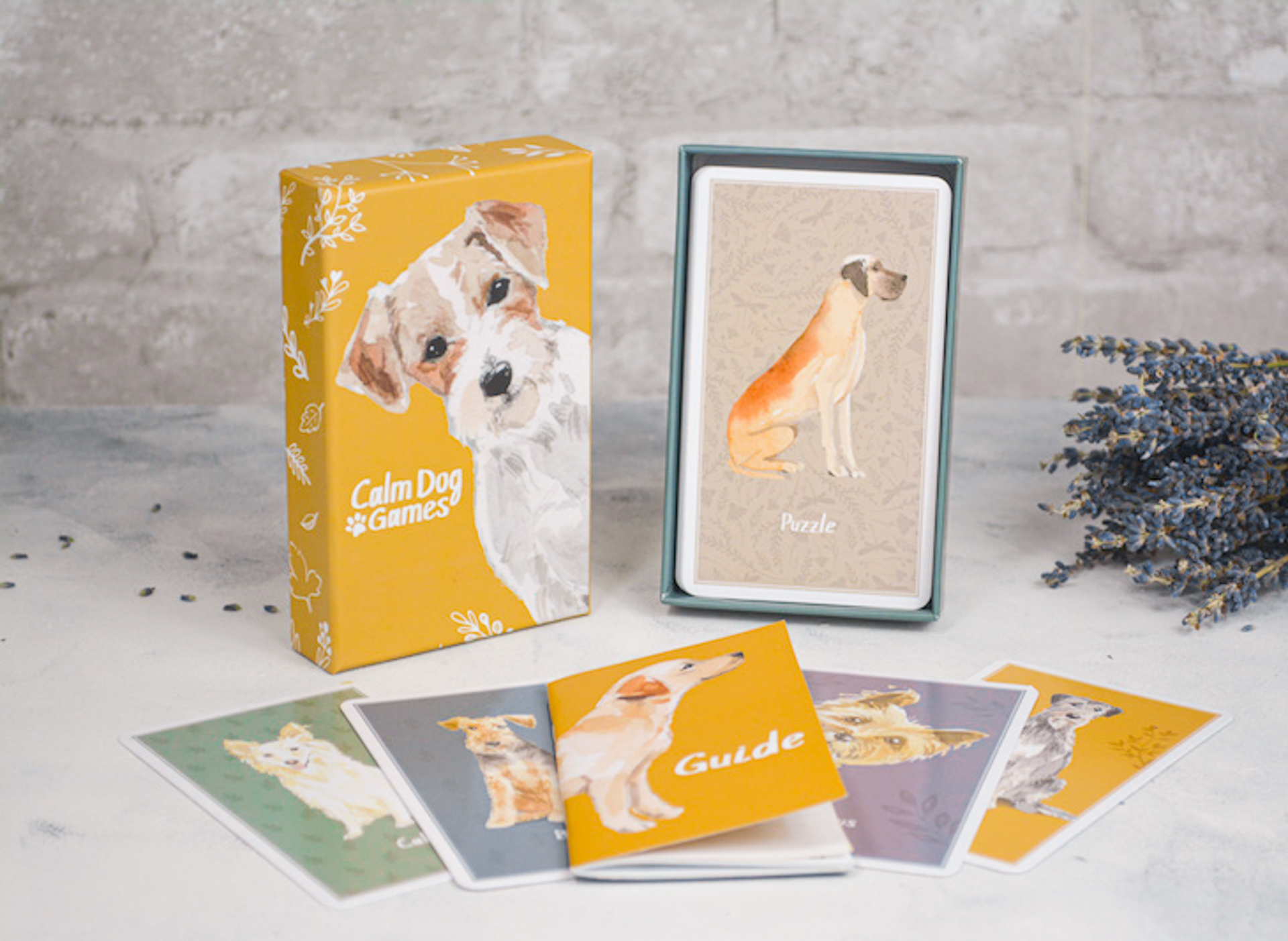 Calm dog games, brain training games for dogs, brain training for dogs, mental stimulation for dogs
