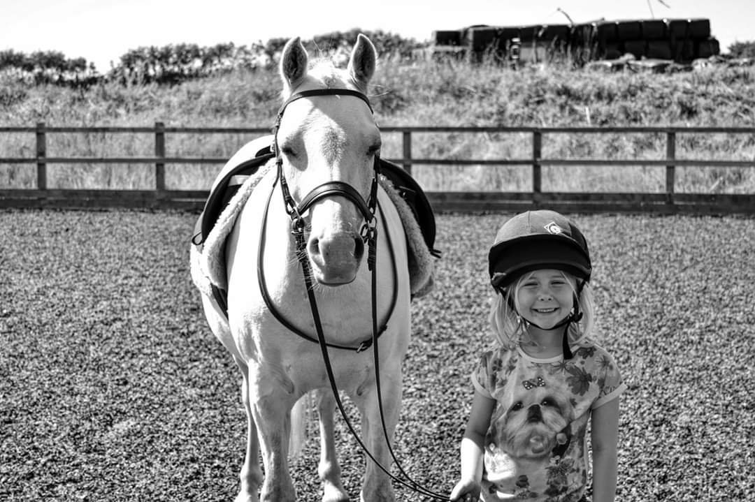 Children's riding lessons. Modern riding lessons.