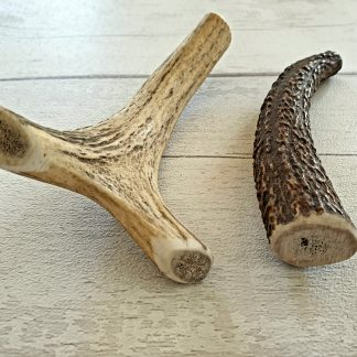 Solid antler dog chews. Natural long lasting dog chews