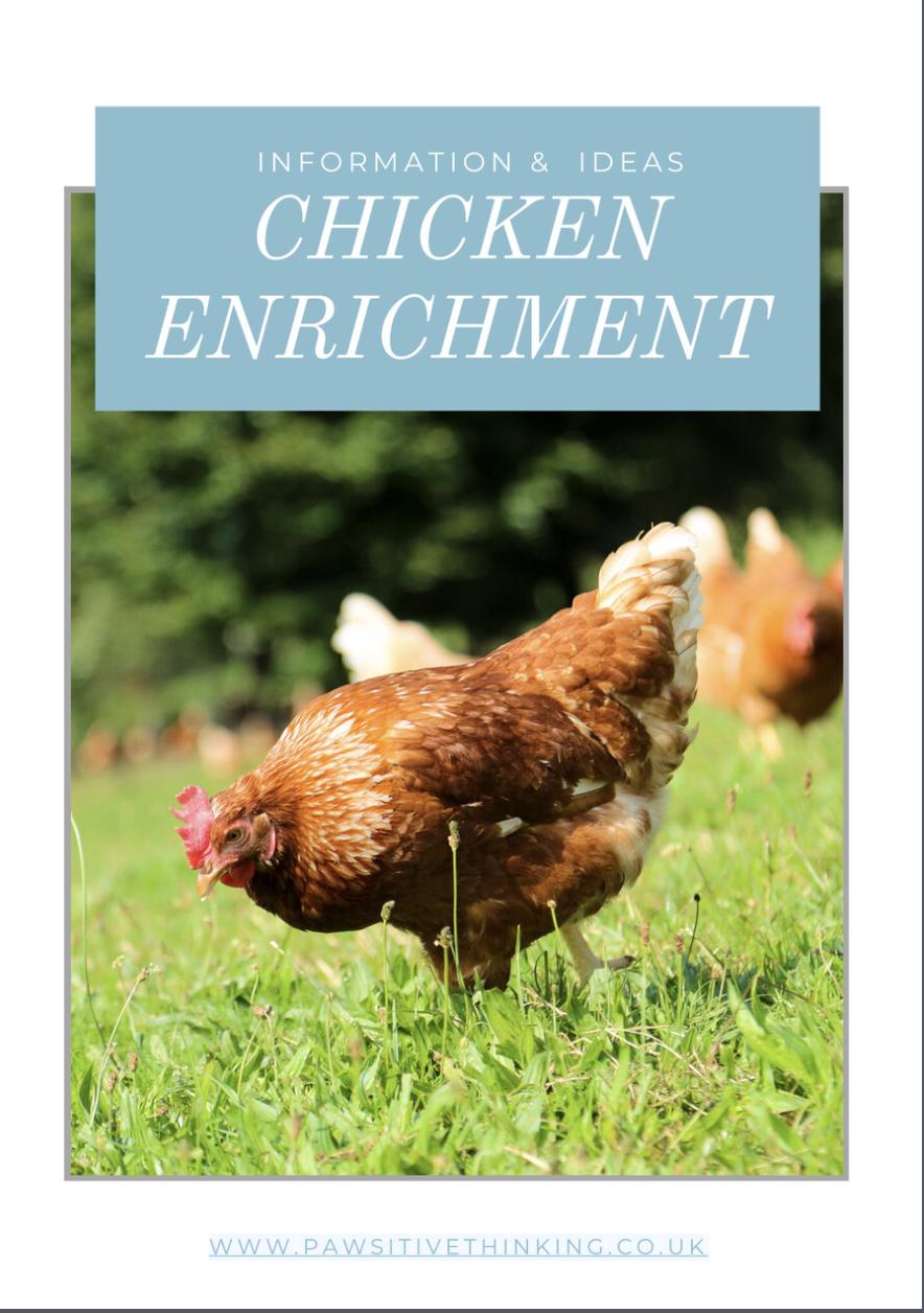 Chicken enrichment